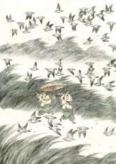 Zao Dao - carnet sauvage - 71