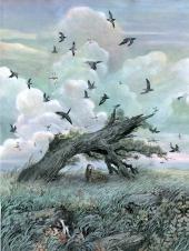 Le souffle du vent dans les pins 5