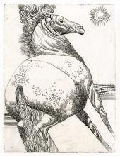Toppi eau-forte cheval
